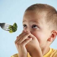 Quando a criança não quer comer