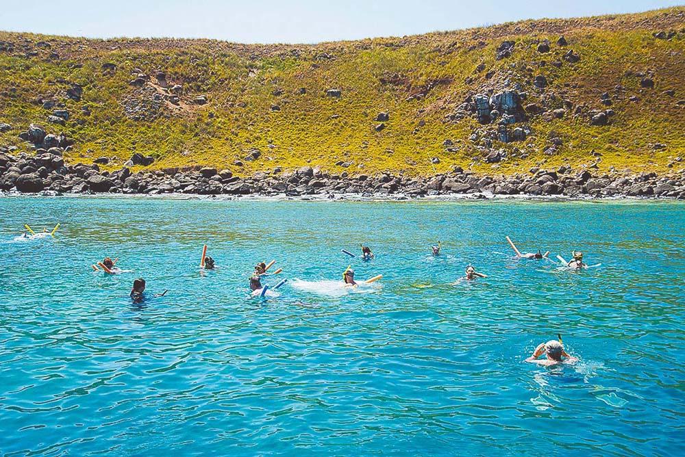 Mergulho livre e profissional no Parque Marinho de Abrolhos