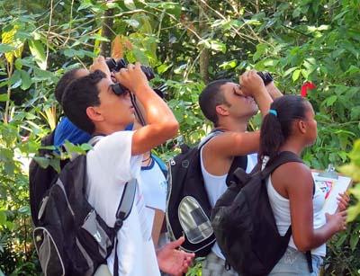 Avistar Brasil busca aproximar o público da natureza
