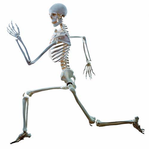 Mais cuidado com os ossos