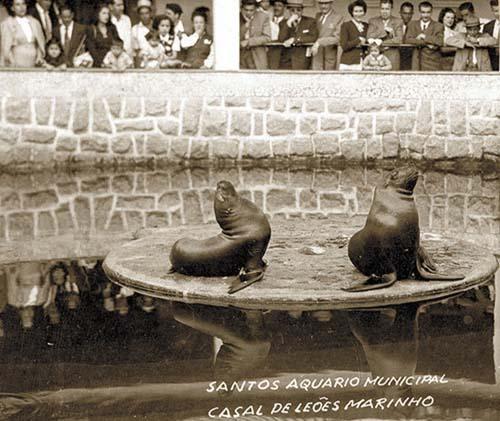 Aquário mais antigo do Brasil