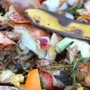 Faça em casa a transformação do lixo orgânico em adubo