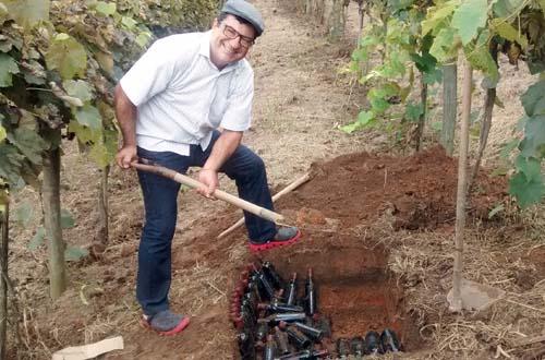 Noite do Vinho dos Mortos mistura tradição e sabores na Quinta do Olivardo