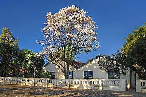 Museu Casa de Portinari comemora 47 anos e anuncia Programa de Parceiros