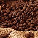 Safra de café recua e previsão é de 45,5 milhões de sacas