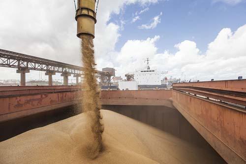 VLI registra 5,5 milhões de toneladas de grãos no Corredor Centro-Norte