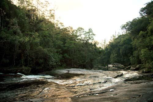 Parque das Neblinas conserva mais de 400 nascentes do rio Itatinga
