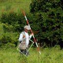 Inventário Florestal avança na Amazônia