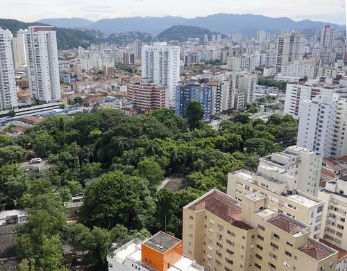 Audiência Pública debaterá hoje arborização urbana em Santos