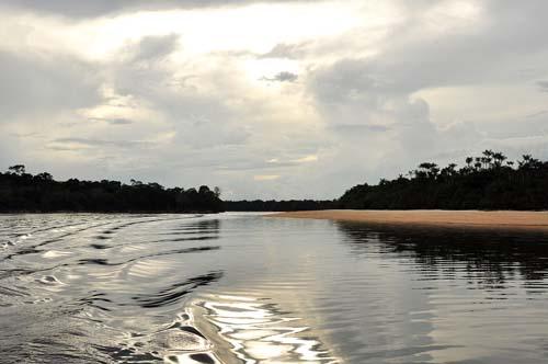 Amazônia e Caatinga ganham novas áreas protegidas