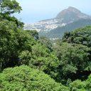 """Áreas protegidas aderem à campanha """"Um Dia no Parque"""""""