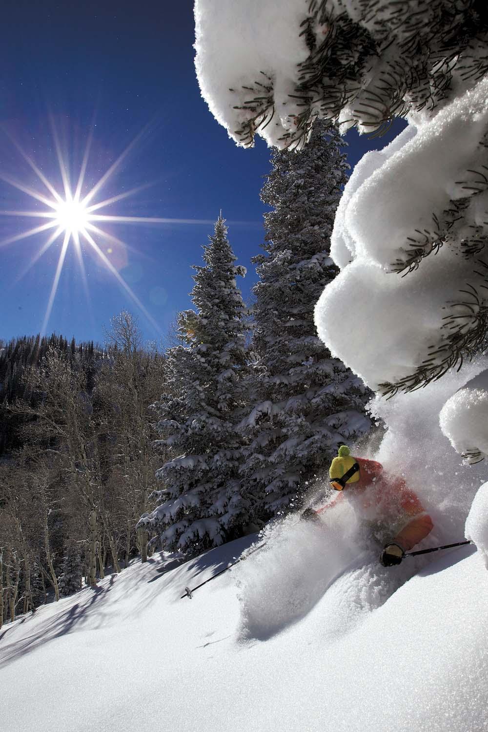Temporada de neve!