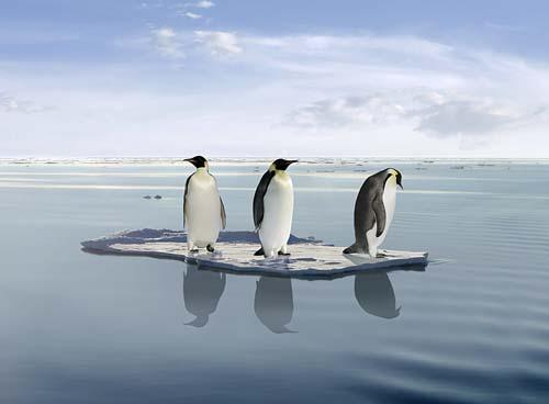 Brasil promove Diálogo Talanoa sobre Mudanças Climáticas