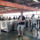 Animais de estimação no transporte público depende de lei