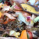Aprenda a fazer compostagem doméstica, fácil e sustentável