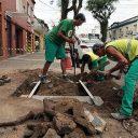 Dispositivo visa controlar raízes de árvores e prevenir danos em calçadas