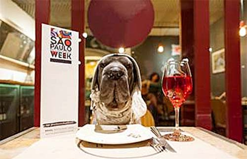 Pets são bem-vindos na 25° edição da São Paulo Restaurant Week