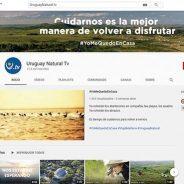 Roteiros no Uruguai sem sair de casa