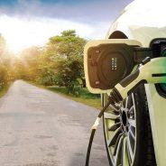 Elétricos caminham. Sem pressa.