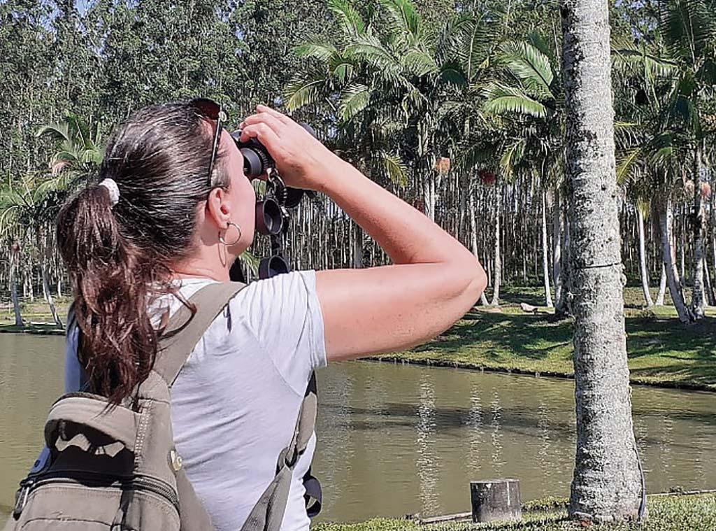 Roteiro para observar aves