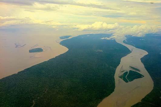 Dano ambiental predomina em processos sobre meio ambiente, revela CNJ